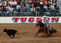 Tucson Rodeo © Woody Hibbard