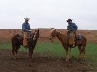 Cowboys © Pschemp