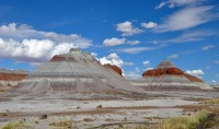 Petrified Forest National Park © Finetooth