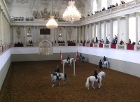 Spanish Riding School © sparre