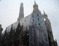 St. Stephens Cathedral in Vienna Austria © manjeet