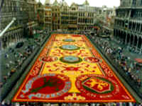 Brussels Flower Carpet ©