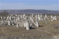 Pomiti Kamani, the Petrified Forest © Juha-Matti Herrala