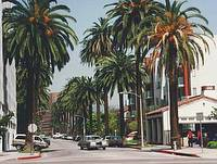 Beverly Hills © Morn the Gorn