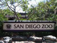 San Diego Zoo © Norvy