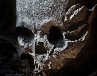 Banpo Village skull © Scott Swigart