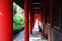 Stele Forest Museum © Fan Yang