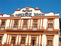 Partagas Cigar factory © Judith Duk