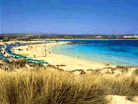 Ayia Napa beach