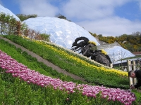 The Eden Project, Southwest England © A1personage