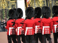 The Queen's Guard, London © bortescristian