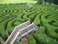 Longleat Maze © odolphie