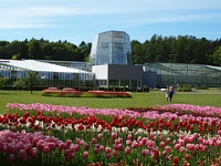 Botanical Gardens © Anita