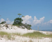 Gulf Islands National Seashore © National Park Service