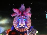 Nice Carnival © Dhinal Chheda