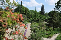 Jardin des Plantes © Celine