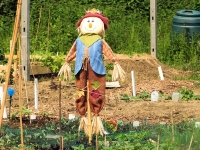 Scarecrow © Keith Roper