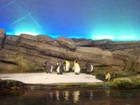 Berlin Zoo-Aquarium