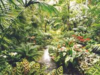 Frankfurt Botanical Gardens