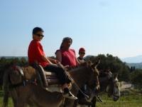 Donkey Trekking © www.lesbosdonkeytreks.com