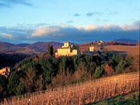 Chianti region, Tuscany ©