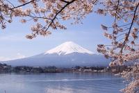 Mount Fuji © Midori