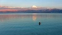 Dead Sea © Pieter van Marion