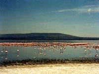 Nakuru National Park © Judith Duk