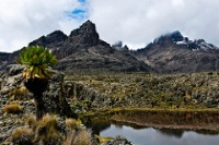 Mount Kenya © Chris Murphy