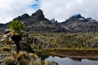Mount Kenya © Chris Murphy