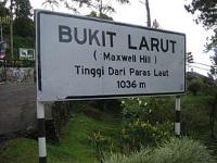 Bukit Larut © SRTG