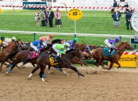 139th Preakness Stakes © Maryland GovPics