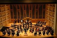 Philharmonic Orchestra © Derek Gleeson.