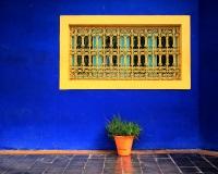 Majorelle Garden, Morocco © Bjorn Christian Torrissen