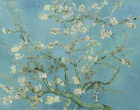 Almond Blossom, Vincent Van Gogh © Creative Commons