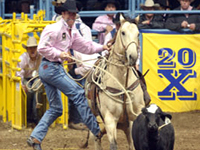 National Finals Rodeo ©