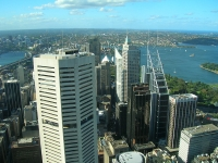 View from Sydney Tower © Jennifer Morrow