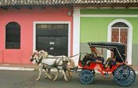 Colourful Granada © Delirante Bestiole