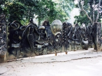 Osun-Osogbo Sacred Grove © Alex Mazzeto