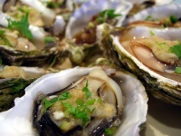 Steamed oysters © Alpha