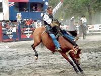 Rodeo riding! © stevebrownd50