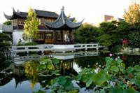 Portland Classical Chinese Gardens ©
