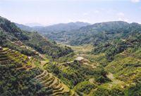 Banaue Rice Terraces © Magalhaes