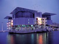Oceanario de Lisboa (Lisbon Oceanarium)