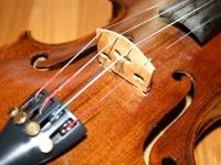 Violin © GregPC