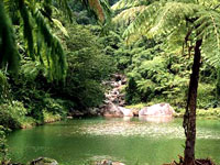 El Yunque © El Yunque Travel Guide