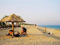 Palm Tree Island © Qatar Embassy