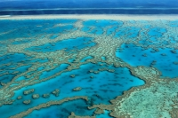 Great Barrier Reef © FarbenfroheWunderwelt