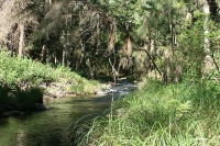 Coomera River, near Sanctuary Cove © Sanx