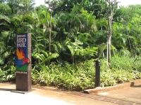 Jurong Birdpark, Singapore © Terence Ong